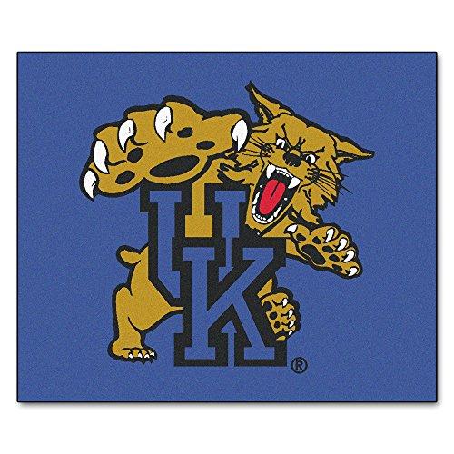 FANMATS NCAA University of Kentucky Wildcats Nylon Face Tailgater Rug