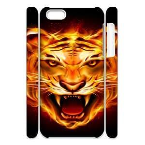 Iphone 5C Flame 3D Art Print Design Phone Back Case Custom Hard Shell Protection FG070796