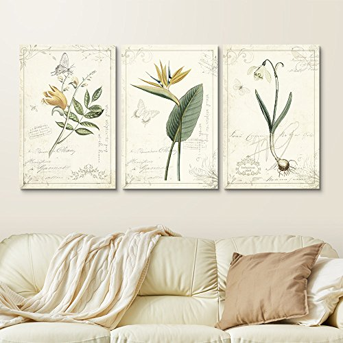 3 Panel Vintage Style Plants and Flowers Gallery x 3 Panels