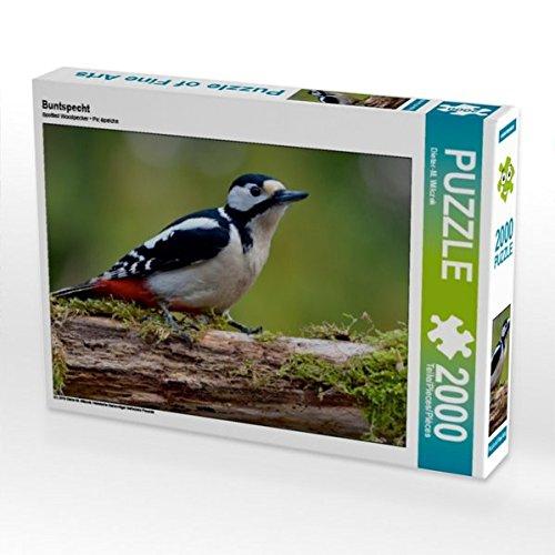 CALVENDO Puzzle Buntspecht 2000 Teile Lege-Größe 90 x 67 cm Foto-Puzzle Bild von Dieter-M. Wilczek B01NCNRN7G Klassische Puzzles Die erste Reihe von umfassenden Spezifikationen für Kunden | Maßstab ist der Grundstein, Qualität ist Säulenbalken,