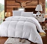 Royal Hotel Queen Size Down-Comforter 500-Thread-Count Down Comforter 100...