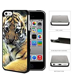 Cute Striped Baby Tiger Animal Close Up Hard Snap on Phone Case Cover iPhone 5c
