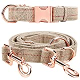 Tifereth Heavy Duty Dog Leash and Collar Set 6 Foot Perfect for Medium to Large Dogs (L (15.7''-26''), Beige)