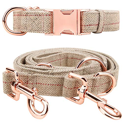 Medium-Large Big-Female Heavy-Duty Dog-Collar Leash-Set – Rose Gold 6 Foot Exceptionally Elegant Design and Adjustable in 3 Different Lengths for Medium to Large Dogs