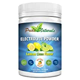 Electrolyte Powder - Refreshing Pre & Post Workout Recovery Electrolytes | All Natural, Sugar Free, Gluten Free & Vegan | Pure Keto & Paleo Hydration Beverage Mix | Immune Boosting Vitamins & Minerals