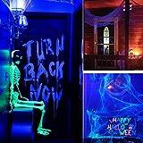 kwmobile Black Light Bulbs E26 - LED Ultraviolet