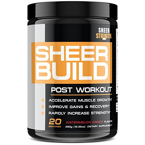 Premium Post Workout Muscle Builder | Pure BCAAs + Creatine + Vitamin D3 + L-Glutamine | Supports Rapid Lean Muscle Growth & Recovery in Men and Women - 20 Servings, Sheer Strength Labs