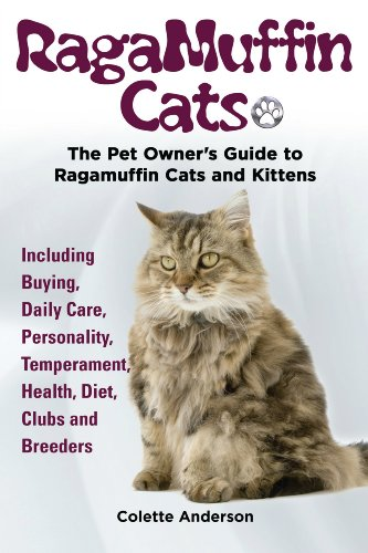 RagaMuffin Cats: The Pet Owners Guide to Ragamuffin Cats and Kittens Including Buying, Daily Care, Personality, Temperament, Health, Diet, Clubs and Breeders (Ragamuffin Cats)