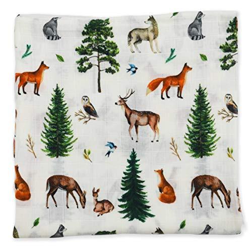 Earthy Organic Muslin Baby Toddler Blanket Swaddle 100% Organic Cotton (Cedar - 1 Layer, 48 x 48)