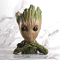 Quace Groot Flower Pot