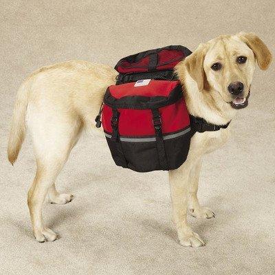 [해외]네오프렌 데이 개 트리퍼 크기 : 대형 (2.5 H x 52 W x 14 D), 색상 : 레드/Neoprene Day Dog Tripper Size: Large (2.5  H x 52  W x 14  D), Color: Red