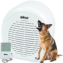 Electronic Barking Secure Watch Dog