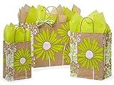 125 Painted Daisies Bag Asstortment 50 Rose, 50 Cub & 25 Vogue Bags (Unit Pack - 125)