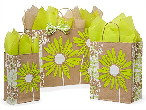 125 Painted Daisies Bag Asstortment 50 Rose, 50 Cub & 25 Vogue Bags (Unit Pack - 125)
