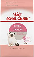 Royal Canin Croquetas para Gatos, Kitten, 3.17 kg