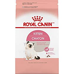 Royal Canin Feline Health Nutrition Kitten Dry Cat Food, 3.5-pound