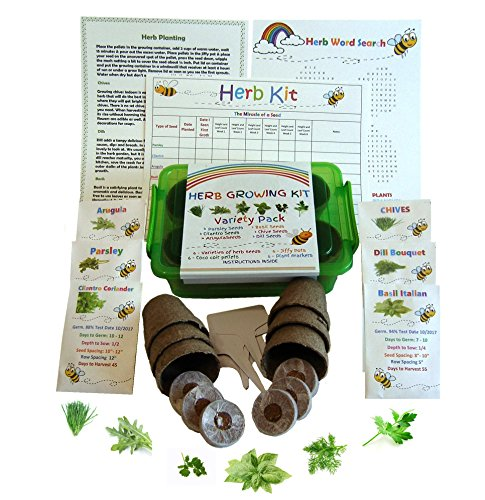 Kids Garden Herb Kit-Grow 6 Herbs Set Contains Everything you Need- 6 Differant Seeds, Pellets, Jiffy Pots, Plant Markers, Grow Container, Grow Chart and Instructions (Childrens Seed Kit)