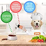 Shake it Pup! Dog Food Seasoning - Sample Flight of Flavors - 100% Human-Grade, All-Natural Dry Topper, Broth, Gravy for Kibble, Raw, Picky Eater - Salmon, Pizza, Charcuterie, Bone & Joint, Probiotics