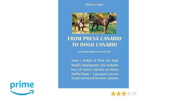 From Presa Canario To Dogo Canario An Enriching Reading For All