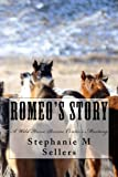 img - for Romeo's Story: A Wild Horse Rescue Center's Mustang book / textbook / text book