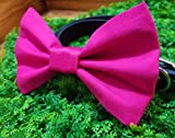 Hot Pink Fuchsia Solid Pet Bow Tie