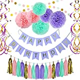 Birthday Party Decoration Party Supplies, Party Decors and Sets, Including Happy Birthday Banner, Paper Tassels, Paper Pom Pom, Dot Paper Garland and Swirls