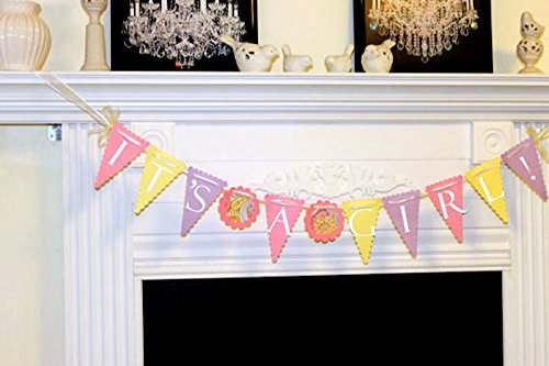 It's A Girl Banner, Baby Shower Decoration, Photo Prop, Birth Announcement, Baby shower banner, shower decor, pink yellow purple (Pink Photo Birth Announcement)