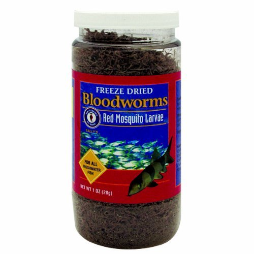 freeze dried bloodworms - 8