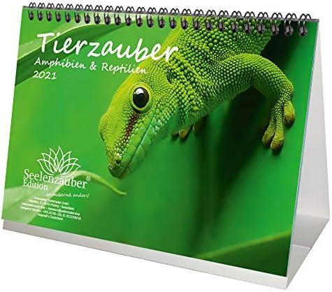 Tierzauber Amphibien und Reptilien DIN A5 Tischkalender für 2021 - Geschenkset Inhalt: 1x Kalender, 1x Weihnachts- und 1x Grußkarte (insgesamt 3 Teile)