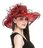 Saferin Women 's Royal Fascinator Organza Church Kentucky Derby Wedding Party Hat Burgundy Mesh Feather Free size
