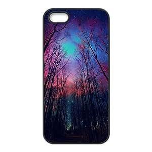 Iphone 5,5S Northern Lights Phone Back Case DIY Art Print Design Hard Shell Protection FG080156