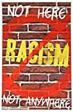 Youth Change Anti-Racism Builds Safety, Tolerance, Acceptance of Diversity Posters (Poster #527)