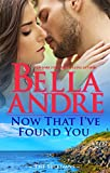 Book Cover for Now That I've Found You (New York Sullivans #1) (The Sullivans Book 15)