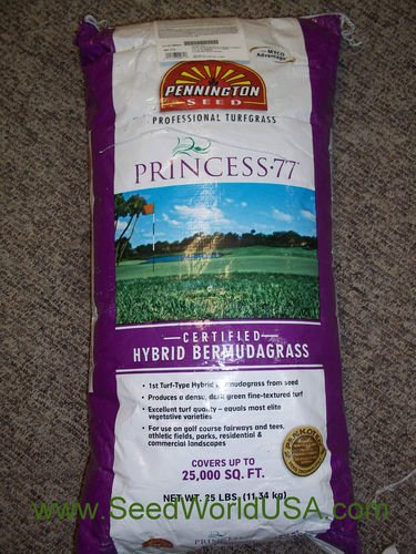 Princess 77 Hybrid Bermuda Grass Seeds 2 Lbs