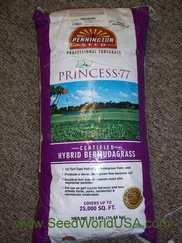 Princess 77 Hybrid Bermuda Grass Seeds 2 Lbs (Bulk) by Pennington Seed (Image #2)
