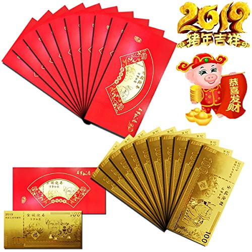 10Pack Chinese Gold Pig New Year Gold Banknote with Hong Bao Red Money Envelopes - Felicitous Wish of Making Money Great Health Great Source of Wealth Most Favorable Auspices Achievement in Academic (Best New Year Card Wishes)