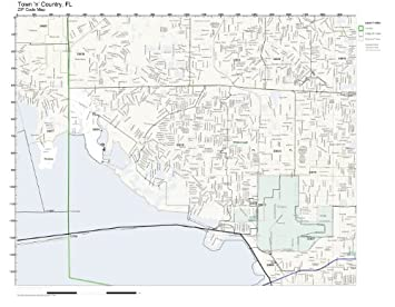 Amazoncom ZIP Code Wall Map of Town n Country FL ZIP Code Map