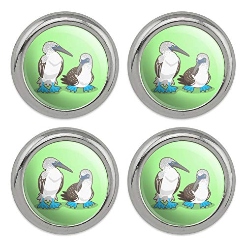 Pair of Blue Footed Boobies Metal Craft Sewing Novelty Buttons - Set of 4