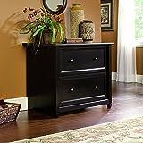 decorative file cabinets - Sauder 409044 Estate Black Finish Edge Water Lateral File