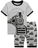 HYY Kids Boy Pajama Short Sets 100% Cotton Summer Sleepwear Dinosaur size2T-12years (Train-3T)