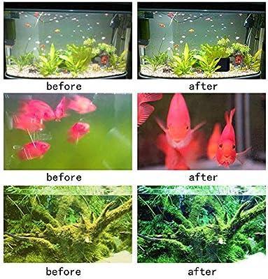 Abilieauty Eco-Aquariums Agua Purificador Pecera Nuevo Filtración ...