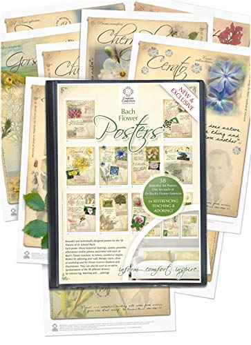 Creature Comforters 38 FLOWER POSTERS SET for Bach Essences Remedy...
