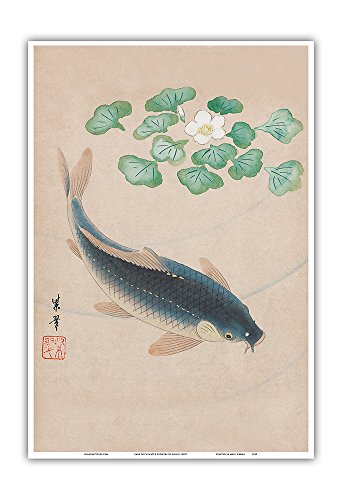 (Carp with Water Flowers - Vintage Japanese Woodblock Print by Shisui 1900's - Master Art Print - 13in x 19in)