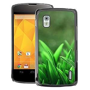 A-type Arte & diseño plástico duro Fundas Cover Cubre Hard Case Cover para LG Nexus 4 E960 (Spring Growing Clean Forest)