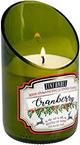 Home Locomotion 12010882 White Cranberry Zinfandel Scented Candle, Multicolor