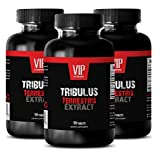 Testo Boost – TRIBULUS TERRESTRIS PREMIUM EXTRACT 1000mg – Tribulus terrestris fruits – 3 Bottles 270 Tablets Review