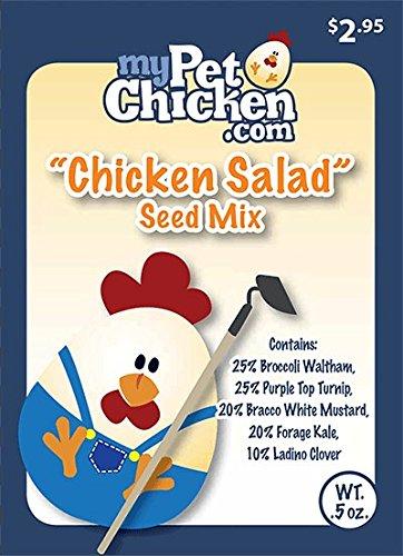 Amazon.com: Pollo mezcla de semillas y para los pollos de ...