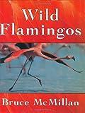 Wild Flamingos, Bruce McMillan, 0395845459
