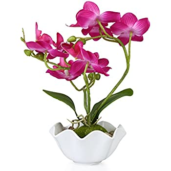 Amazon.com: MyGift Decorative Artificial Silk Phalaenopsis Orchid Flower with White Vase, Purple: Home & Kitchen