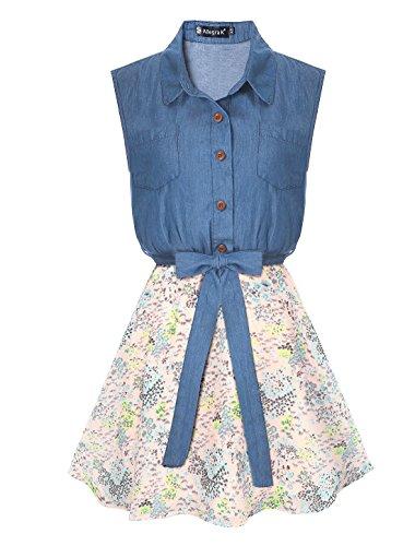 Ladies Denim Dress (Allegra K Women's Half Placket Flower Chiffon Panel Shirt Dress S Pink)